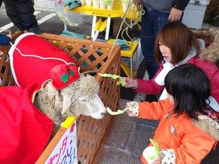 南三陸町歌津地区に子ども達が笑顔で楽しめる遊び場を。
