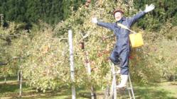 丸かじりリンゴを届けたい