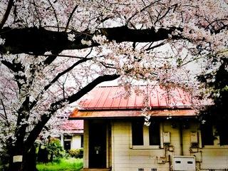 取り壊し目前!?阿佐ヶ谷住宅を写真集に遺したい。