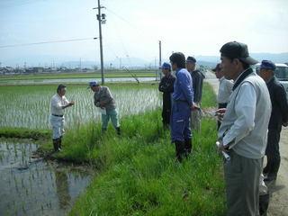 マルチヘリ、特殊カメラによる超良食味米栽培技術を確立したい