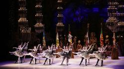 松山バレエ団|心の危機に寄り添い尽くすバレエ芸術にご支援を。