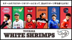 【スポーツの力で富山を元気に】TOYAMA WHITE SHRIMPS