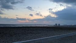 幕張の浜清掃事業2020ミニ