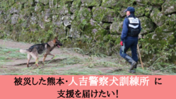 復旧支援:被災した熊本の災害救助犬・警察犬訓練拠点を再興