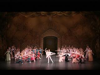 夢の世界にご招待!小中学生を招待するバレエ公演を開催します!