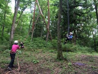 道具を使った木登りで、子供たちに3Dの森を体験させたい!