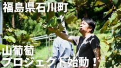 「山葡萄で何ができる?」福島県石川町を持続可能な地域へ
