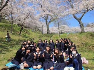被災地に咲く櫻を毎年撮影し復興が進む東北を支援する写真展