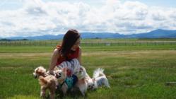 ドッグトレーナーがデザイン。愛犬との絆を深めるお手伝い。