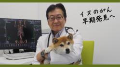 4頭に1頭が発症するイヌのがん、血液一滴から早期発見の検査実現へ
