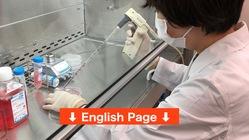 新型コロナウイルス感染症:重症化を抑える新薬の開発に向けた第一歩を
