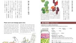 手作り果実酒を二十四節気と行事で紹介する英訳併記のレシピ絵本。
