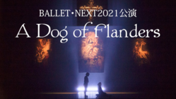 BALLET NEXT公演「A Dog of Flanders」