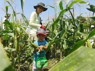 自然栽培フェア2015を開催し無肥料自然栽培法を広めていきたい!