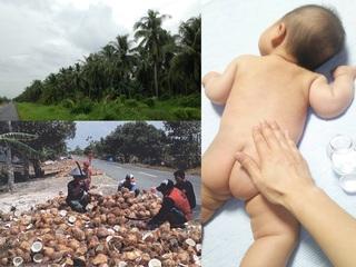 インドネシア直送!安心して使える搾りたてココナッツオイル制作