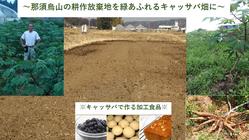 地域農業振興と地球温暖化防止のため那須烏山の耕作放棄地をなくしたい