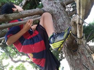 木登りしたり虫取りしたりみんなで過ごす「じいじの家の夏休み」