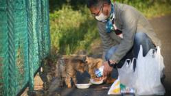 柏尾川保護猫ボランティアサポーター