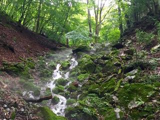水源の森を守りたい!
