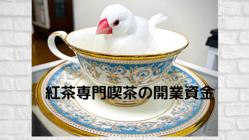 高円寺に文鳥のいる紅茶専門喫茶をオープンしたい