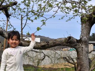 三陸の未来を担う子どもたちのために、120年続く地域文化と産業を残したい!