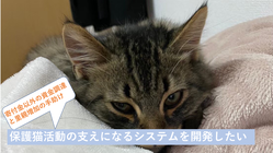 【IT×保護猫団体】 保護猫団体をサポートするシステムを作りたい‼