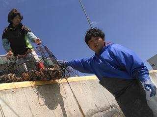 親子3代で守り継ぐ牡蠣養殖業の作業効率化と発展を目指して!