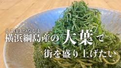 大葉で街を盛り上げたい「食べて」「飲める」横浜綱島産の大葉で!!