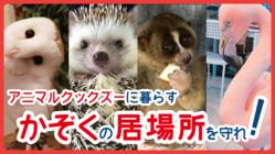 33種類50匹の生き物からのヘルプ!仲良く暮らす居場所を守りたい!