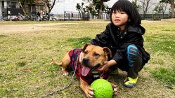 犬の心を学び、動物も人も思いやることのできる学習ワークブックを