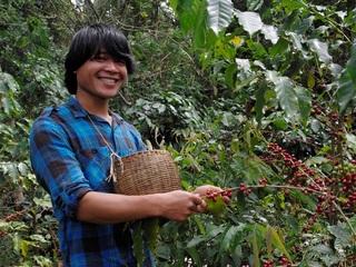 ラオスのコーヒー生産者達を日本に!日本の消費者と交流します!