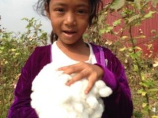 カンボジア地雷除去地を綿畑へ再生するために必要な機械を購入!