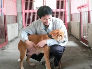 宮崎で保護される犬猫3800匹の命をつなぐ愛護センター設立を!