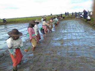 有機液化肥料でミャンマーの人々の暮らしを豊かにしたい!!