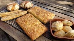 那須産のパン用小麦栽培で那須を新たなパンの聖地に