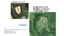 違法山砂採取の大穴に、ゼロから育ててきた苗木の森を守りたい!