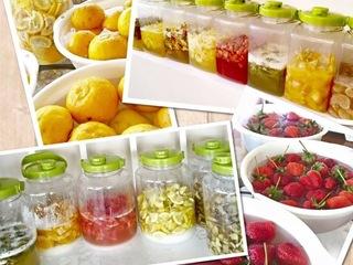捨てられてしまう作物を有効活用して作る酵素セミナー開催!