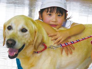 殺処分をまぬがれ、1000人の心を救った犬の移動手段を確保したい