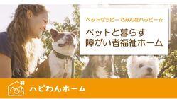 保護犬と暮らす障がい者福祉ホーム!ペットセラピーでみんなハッピー☆