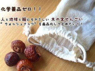 木の実洗剤で日本の美しい自然を子供たちに残したい