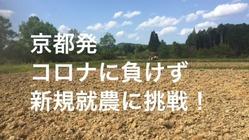 伝統文化に学んだ「和」の心を継承したい!茶道〜農業へ新しい挑戦!