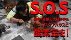 傷病犬猫たちのために酸素室を購入・設置したい -2021/7/15