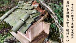 奈良・大師山寺|倒木被害を受けた四国八十八ケ所のお社を復興したい!