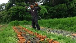 有機農家の作業倉庫建設費用にご支援下さい