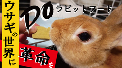 ウサギの健康を第一に!獣医師開発のラビットフードを全国に届けたい