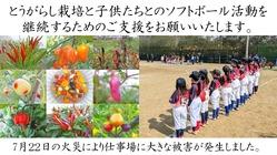 とんがらし芥川:火事で半焼した苗を育てるガラス温室を復旧したい