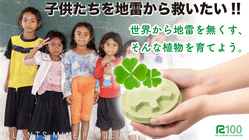 子供たちを地雷から救いたい!!世界から地雷をなくす植物を育てよう。
