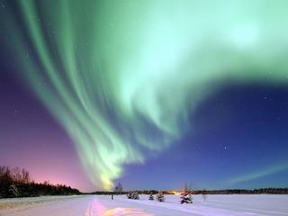 オーロラハニーでアラスカの過疎地域の村に産業を根付かせたい!