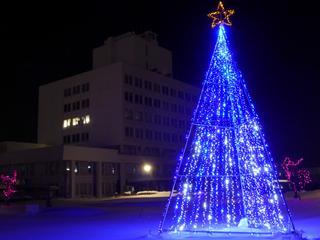 ☆キラキラ大作戦☆米沢市に1万球のイルミネーションを灯したい!