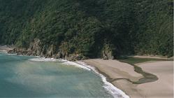 写真集を出版して、奄美の自然の美しさを伝えたい